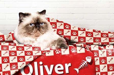 4d2af0d6c2d5 Cat Blanket